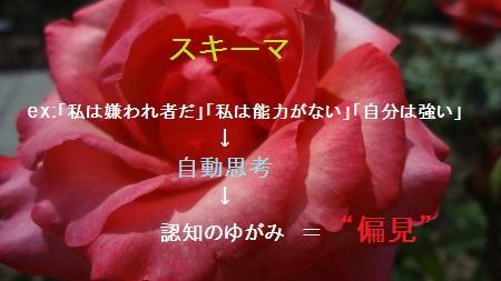 f:id:sumikichi52:20170705215211j:plain