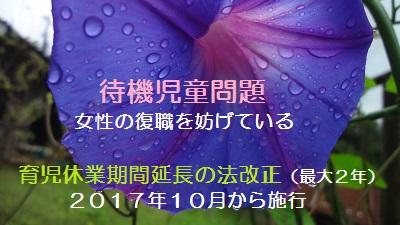 f:id:sumikichi52:20170707113939j:plain