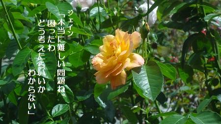 f:id:sumikichi52:20170711192419j:plain