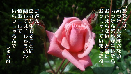 f:id:sumikichi52:20170711192423j:plain