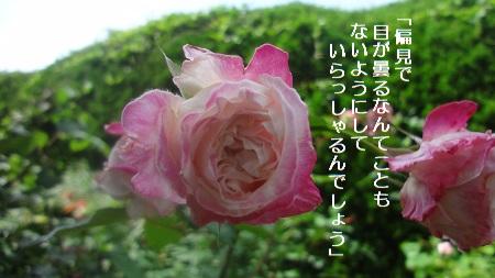 f:id:sumikichi52:20170711192424j:plain