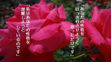 f:id:sumikichi52:20170711192426j:plain