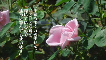 f:id:sumikichi52:20170711192427j:plain