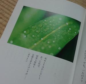 f:id:sumikichi52:20170714110242j:plain