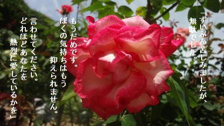 f:id:sumikichi52:20170719211850j:plain