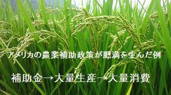 f:id:sumikichi52:20170721124252j:plain