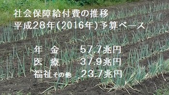 f:id:sumikichi52:20170721124259j:plain