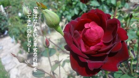 f:id:sumikichi52:20170726080908j:plain