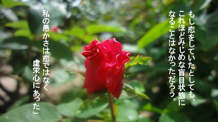 f:id:sumikichi52:20170726080910j:plain