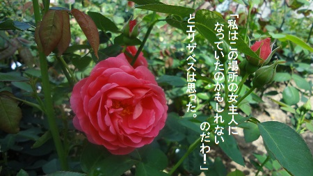 f:id:sumikichi52:20170726080911j:plain