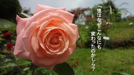 f:id:sumikichi52:20170726080914j:plain