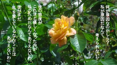 f:id:sumikichi52:20170726080915j:plain