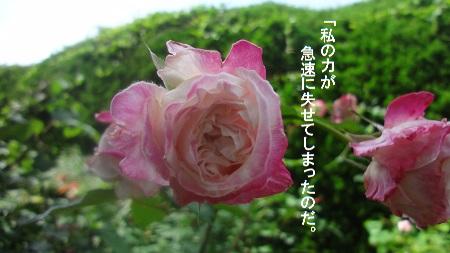 f:id:sumikichi52:20170726080916j:plain