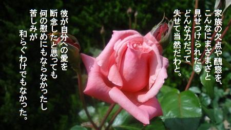 f:id:sumikichi52:20170726080917j:plain