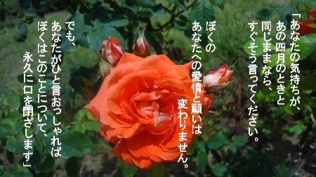 f:id:sumikichi52:20170726080920j:plain