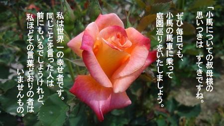 f:id:sumikichi52:20170726080922j:plain