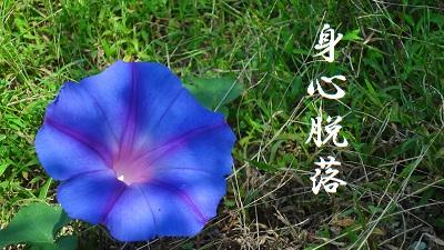 f:id:sumikichi52:20170801085410j:plain