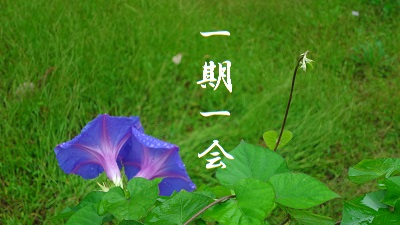 f:id:sumikichi52:20170801085416j:plain