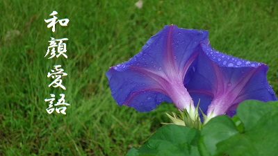 f:id:sumikichi52:20170801085417j:plain