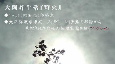 f:id:sumikichi52:20170809101836j:plain