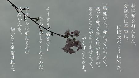 f:id:sumikichi52:20170809101837j:plain