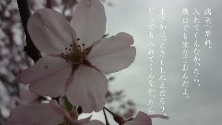 f:id:sumikichi52:20170809101838j:plain