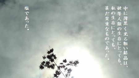 f:id:sumikichi52:20170815212858j:plain