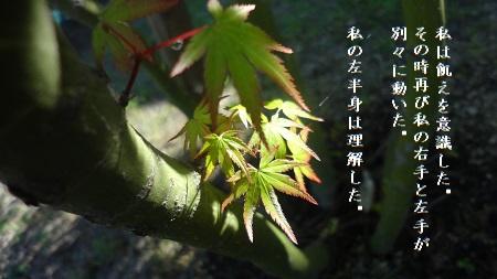 f:id:sumikichi52:20170823100058j:plain