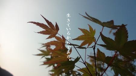 f:id:sumikichi52:20170823100100j:plain