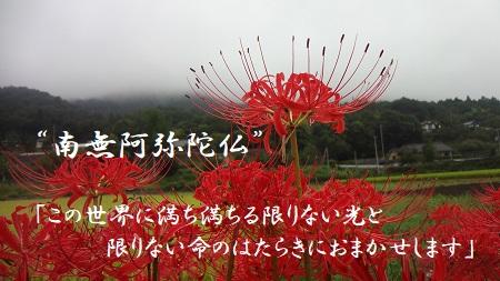 f:id:sumikichi52:20171007125759j:plain