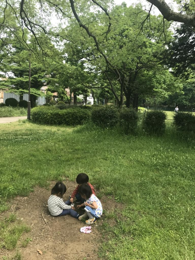 f:id:sumirenoniwaoyakai:20170513051908j:plain
