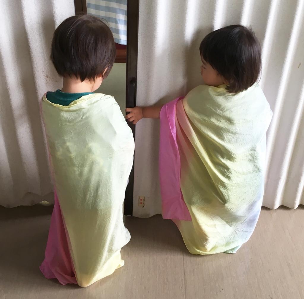 f:id:sumirenoniwaoyakai:20170625210219j:plain
