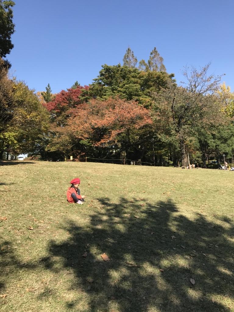 f:id:sumirenoniwaoyakai:20171104194230j:plain