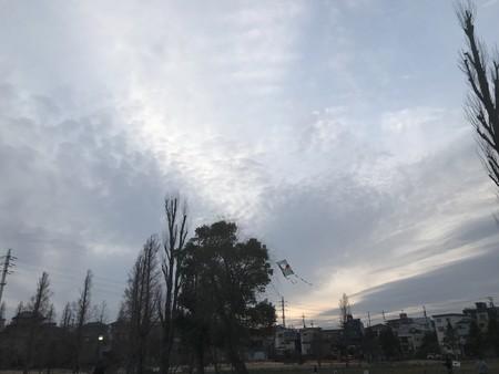 f:id:sumita-m:20200125164530j:image