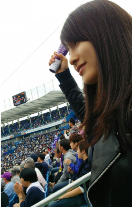 f:id:summer-jingu-stadium:20161024080400p:plain
