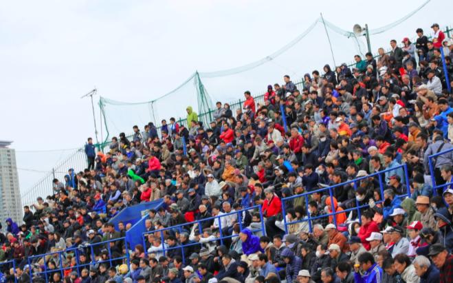 f:id:summer-jingu-stadium:20170415081336p:plain