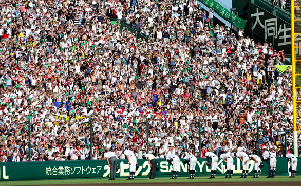 f:id:summer-jingu-stadium:20170528074601p:plain