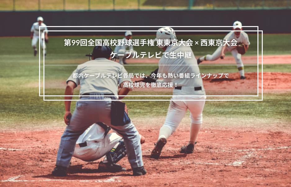 f:id:summer-jingu-stadium:20170614191247p:plain
