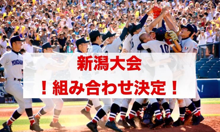 f:id:summer-jingu-stadium:20170617174005p:plain