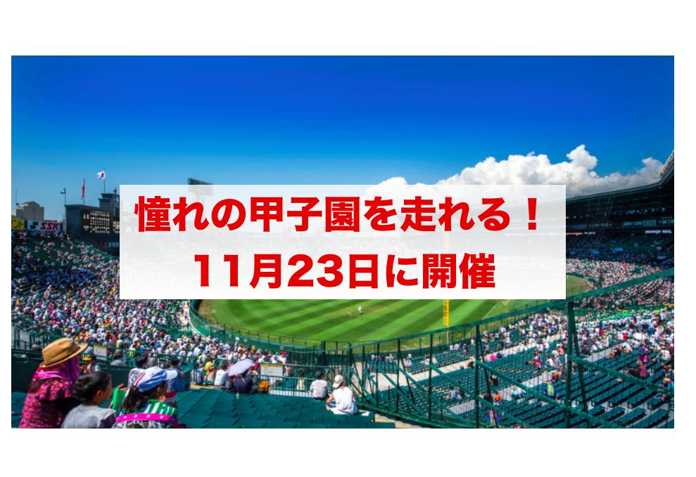 f:id:summer-jingu-stadium:20170815101916p:plain