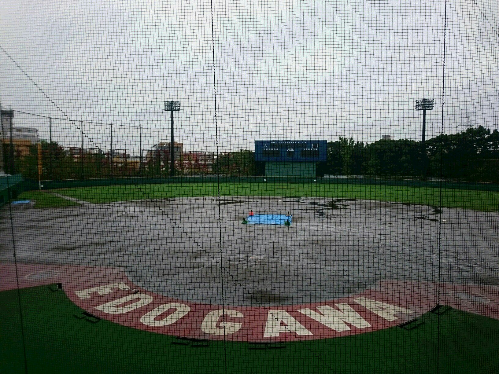 f:id:summer-jingu-stadium:20171017151415j:image