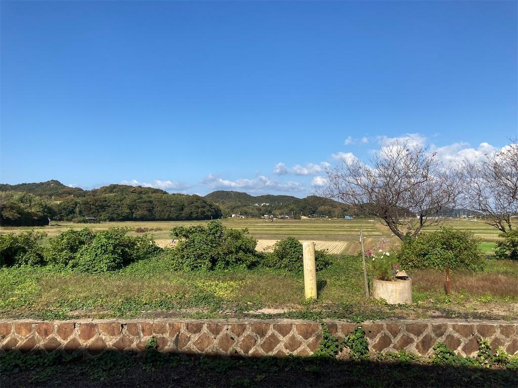 f:id:sumo-to-keiba-to-arbeit:20201031230939j:image