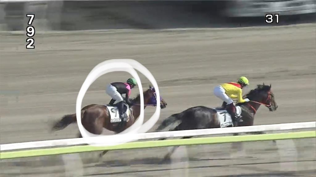 f:id:sumo-to-keiba-to-arbeit:20210119010324j:image