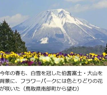 f:id:sumo7:20170531234649j:plain