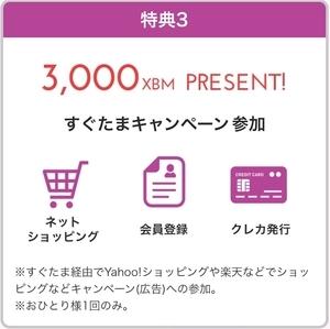 f:id:sumomo_kurashi:20181101072410j:plain