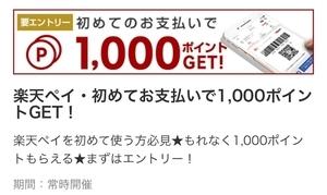 f:id:sumomo_kurashi:20181206122243j:plain