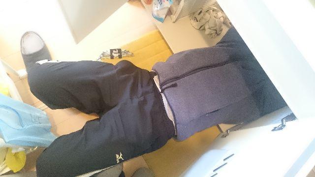 f:id:sumomomomoko:20161026225538j:plain