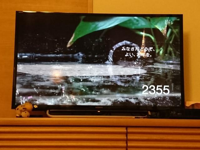 f:id:sumomomomoko:20170102174549j:plain