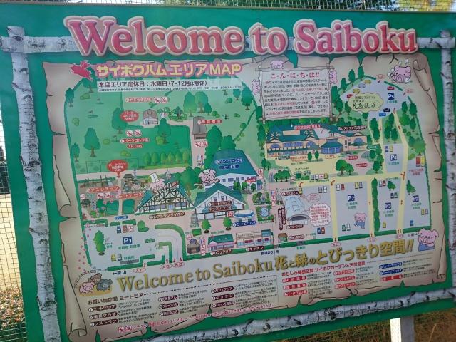 f:id:sumomomomoko:20170109164120j:plain