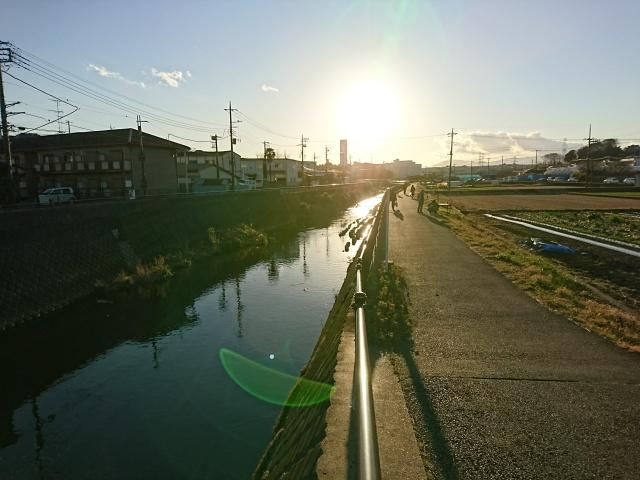 f:id:sumomomomoko:20170116174632j:plain